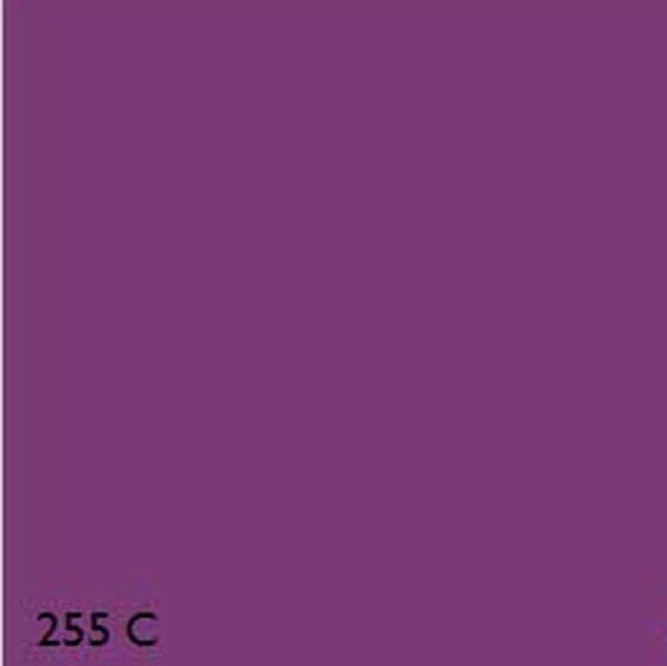 violet pantone number