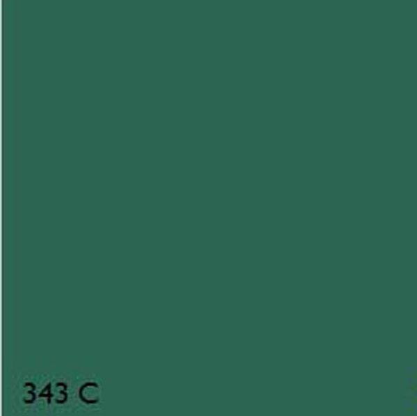 Acrylic Enamel Paint >> Pantone 343C MINT GREEN RANGE