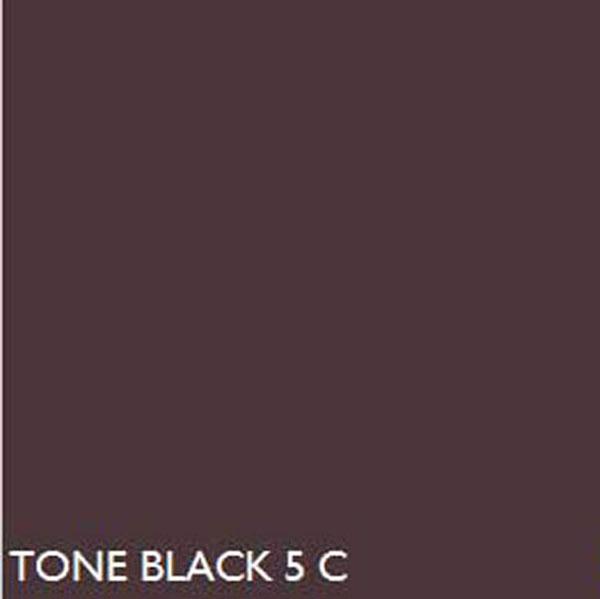 Pantone Black5c Black 5 C
